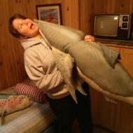 In March 2013, a land shark attacked me while we were on vacation on the Oregon Coast.